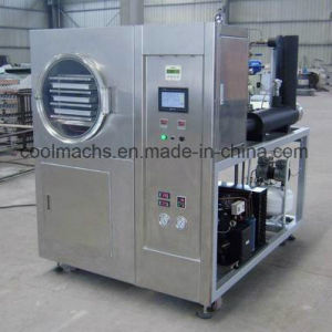 Freeze Dried Food Machine / Mini Freeze Drying Machine with Low Price/Dryer pictures & photos