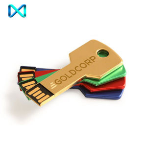 Custom Key Shaped USB Flash Stick Drivers pictures & photos