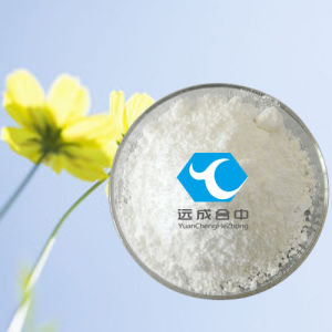 Yellowish Powder 1-Phenyl-2-Nitropropene (P2NP) From China Best Supplier pictures & photos
