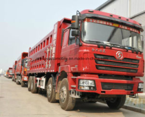 Heavy Capacity Shacman Dump Truck 30 Tons Tipper 8X4 Dumper Price pictures & photos