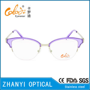 No MOQ Fashion Stainless-Steel Eyeglass Glasses Optical Eyewear (S8202) pictures & photos