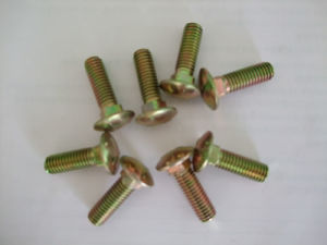 DIN603 Carriage Bolt/Mushroom Head Square Neck Bolts pictures & photos