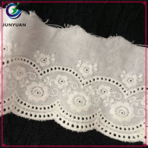 Wholesale off White Spring Embroidered Eyelet Cotton Lace Trimming pictures & photos