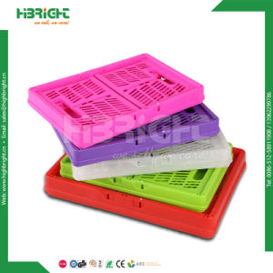 Korea Popular Stackable Foldable Plastic Folding Basket Crate pictures & photos