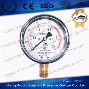 2.5MPa Vibration Proof Pressure Gauge with Dual Scale pictures & photos
