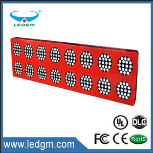 Program Commercial Grower LED Plant Grow Light 100W 200W 300W 400W 500W LED Grow Lights Grow Lights 1000W pictures & photos