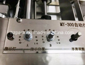 My-300 Stamping Machine/No. Coder/Date Printer From China pictures & photos