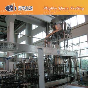 Glass Bottle Beer Equipment/Beer 3 in 1 Filling Machine pictures & photos