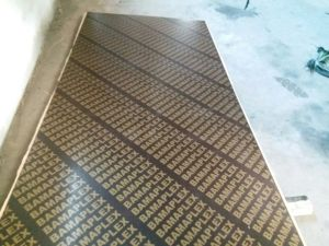 Brown Film Faced Plywood, Brown Film with Printing Logo, Full Poplar Core, Mr Glue, 1220X2440X12mm pictures & photos