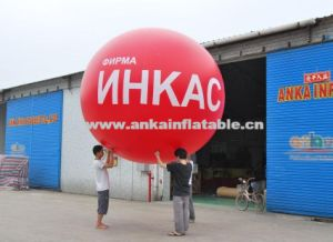Hot Balloon with Your Logo Design Wholesale pictures & photos