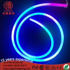 Hot Sale Products LED Single Side RGB Flexible Neon Light Decoration with DMX Control IP 65 pictures & photos