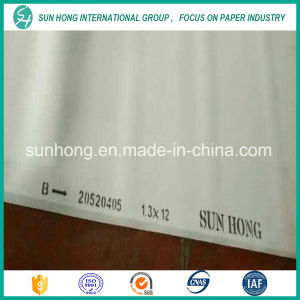 Polyester Single Layer Forming Fabric pictures & photos