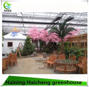 Agriculture Economical Tunnel Green House for Vegetable Growing pictures & photos