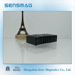 Epoxy Coated Permanent Rare Earth NdFeB Magnet for Rotor, Motor pictures & photos