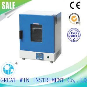 Intelligentized Vertical Electric Plastics Dry Oven (GW-048B) pictures & photos