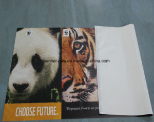 High Resolution Outdoor Double Side Printing Vinyl Banner (SS-VB114) pictures & photos