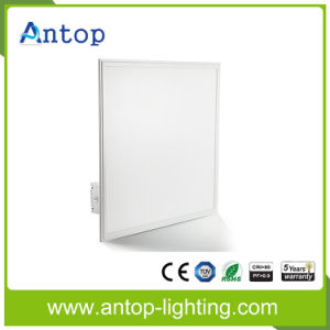 Round/Square LED Ultra-Thin 5 Years Warranty Panel Light