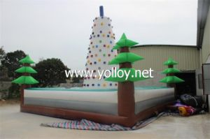 Inflatable Rock Climbing Sport for Kids and Adults pictures & photos