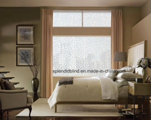 Roller Zebra Blinds Windows Blinds Home Use Blinds Windows (SGD-R-3919) pictures & photos