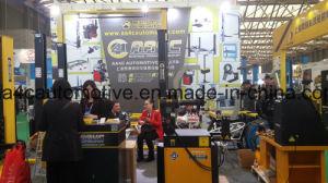 Engine Crane AA-0601c pictures & photos