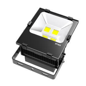 100W LED Floodlight Waterproof Flood Light LED pictures & photos