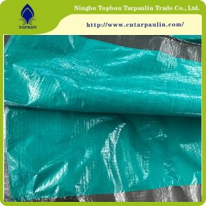 China PE Tarpaulin with UV Treated for Covers TB124 pictures & photos