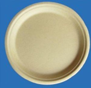 Biodegradable Eco-Friendly 10 Inch Bamboo Pulp Plate pictures & photos