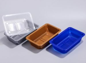 Food Storage Use Black Disposable Absorbent PP Food Container with Lid pictures & photos