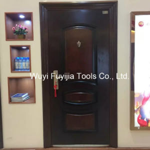 Steel Security Door (FYJ-8892)