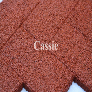 Outdoor Rubber Tile/Recycle Rubber Tile/Wearing-Resistant Rubber Tile pictures & photos