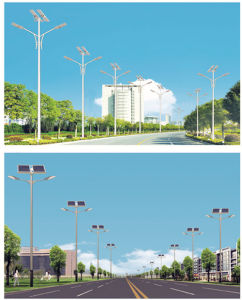 Solar Street Light with Double LED Lamp