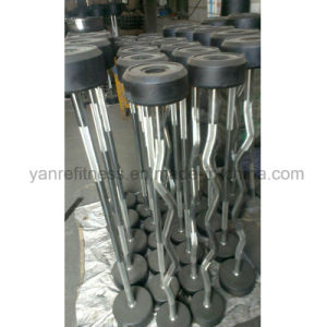 Gym Equipment Parts Straight and Ez Fixed Rubber Barbell pictures & photos