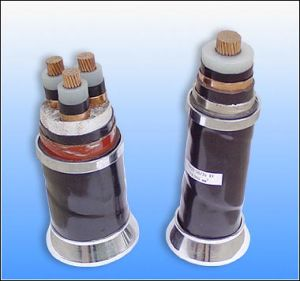 Medium Voltage Power Cable pictures & photos