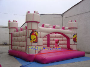 Various Types Inflatable Bouncer with Good Price (A137) pictures & photos