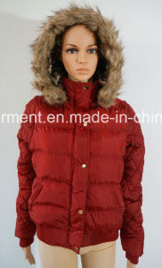 Winter Warm Outdoor Clothes Down Hoody Casual Jacket for Women/Men pictures & photos