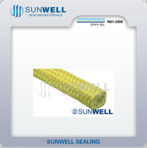 Wear Resistant Aramid Fiber Packing pictures & photos