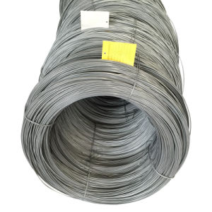 Steel Wire SAE1018 Spheroidized Annealed for Making Fasteners pictures & photos