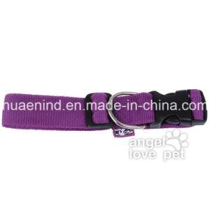 Big Purple Dog Collar, Pet Product pictures & photos
