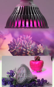 E27 Bulb Lamp 3/5/7/9/12/15/18 W LED Professional Plant Grow Light pictures & photos