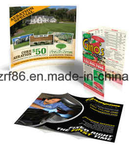 Offset Printing Color Printing Color Book Printing pictures & photos