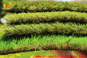 Artificial Lawn for Landscaping Produced by Monofilament Yarn pictures & photos