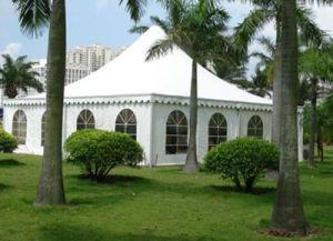 Backyard Garden Party Pagoda Tent pictures & photos