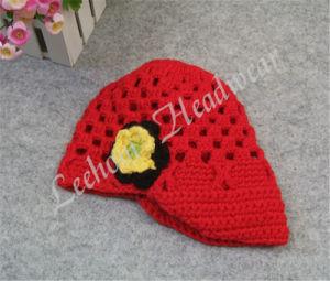 (LKN14014) Winter Crochet Beanie Hat for Girl pictures & photos