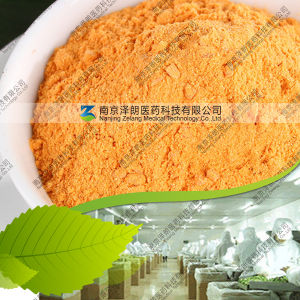 Manufacturer 80~200 Mesh Carrot Powder pictures & photos