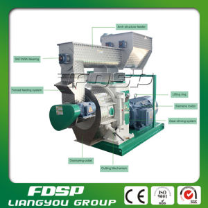 Wood/ Sawdust Pellet Mill for Sale pictures & photos