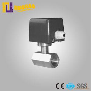 Bien Baffle Flow Sensor (JH-FS-FB12) pictures & photos