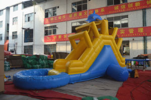 Dolphin Min Inflatable Water Slide with Pool (CHSL437) pictures & photos