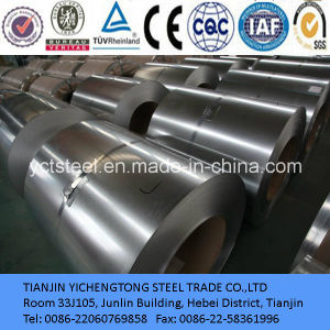 Hot Dipped Galvanized Steel Coil Factory Support pictures & photos