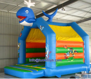 Popular Style Inflatable Game with Carton Printing (A453) pictures & photos