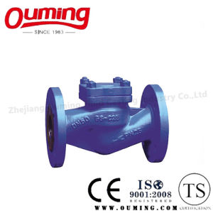 DIN Standard Stainless Steel Flanged Check Valve pictures & photos